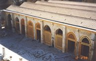 Great Umayyad mosque